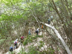 わくわくハイキング (写真はイメージです)