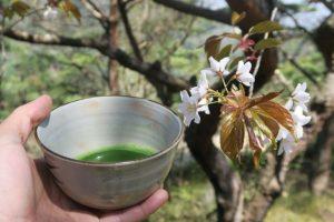 MOTOKOTO「おんたき茶屋ハイク&野点茶会」 @ 摩耶山掬星台集合〜布引の滝