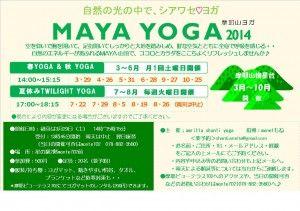 yoga_2014-300x211