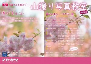 yamadori_04_2016