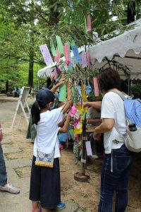 七夕かざりを作ろう @ 神戸市立森林植物園