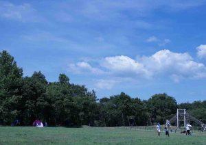 森で遊ぼう!なつやすみ(森林植物園) @ 神戸市立森林植物園