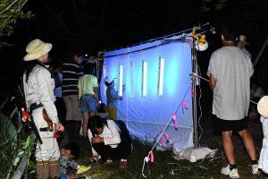 いきもの好き集まれ! 夜間の昆虫採集<ライトトラップ> @ 神戸市立森林植物園