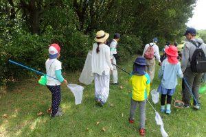 いきもの好き集まれ! 昆虫採集と標本づくり @ 神戸市立森林植物園