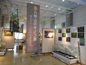 第6回六甲山のキノコ展 @ 神戸市立森林植物園