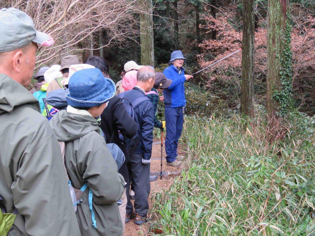 薬樹観察会~くらしと植物~ @ 神戸市立森林植物園