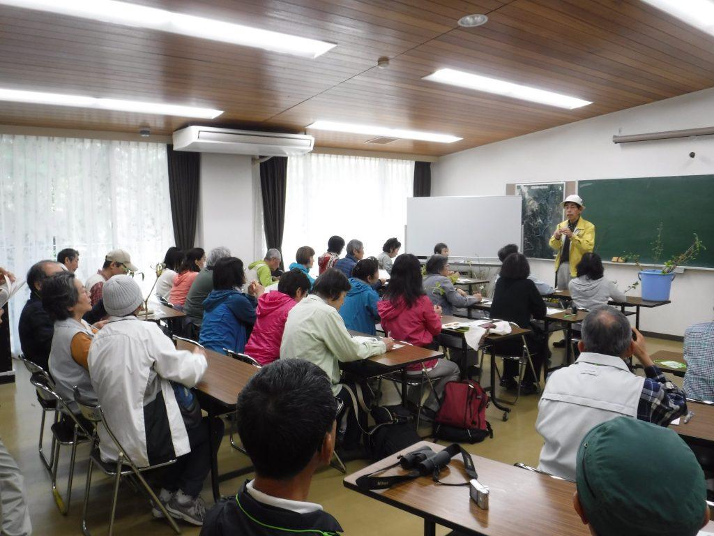 自然観察講座「新緑を訪ねて」~葉っぱのいろいろ~ @ 神戸市立森林植物園