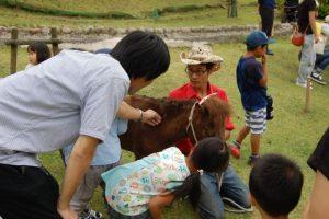馬のふれあい体験 @ 六甲山牧場 北エリア馬舎前