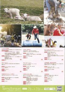 子羊のお披露目 @ 六甲山牧場